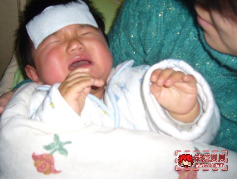 查看金东浩可怜的小贝照片