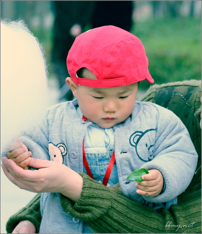 查看金东浩踏春篇——包河游系列之一照片