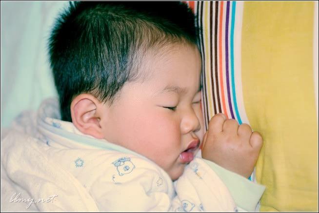 查看金东浩我们家的睡宝宝照片