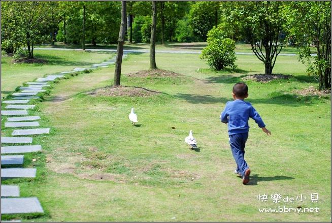 查看金东浩杏花公园一游照片