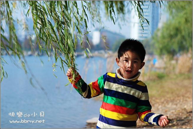 查看金东浩生态公园照片