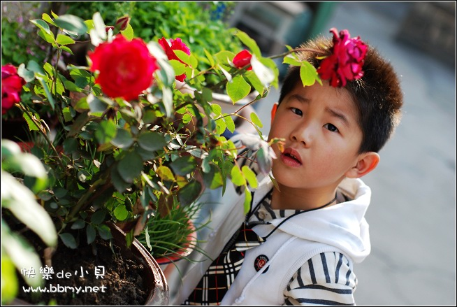 查看金东浩早晨浇花照片