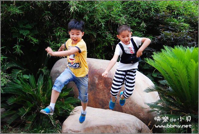 查看金东浩儿童节游杏花照片